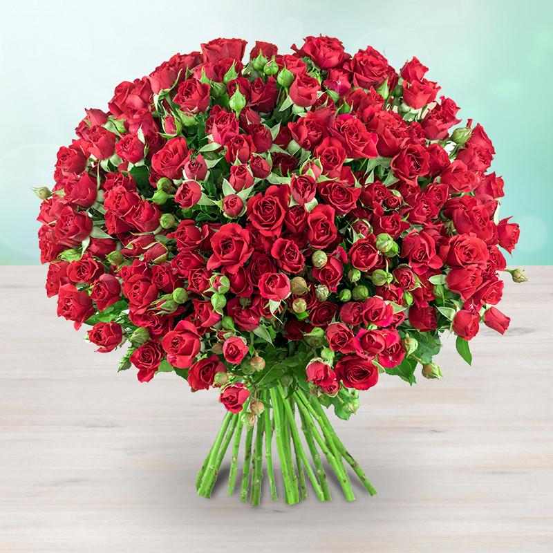 Kytice 112 rudých mnohokvětých růží